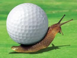 News Règles 15 : La notion de prêt à jouer («Ready Golf» en anglais)